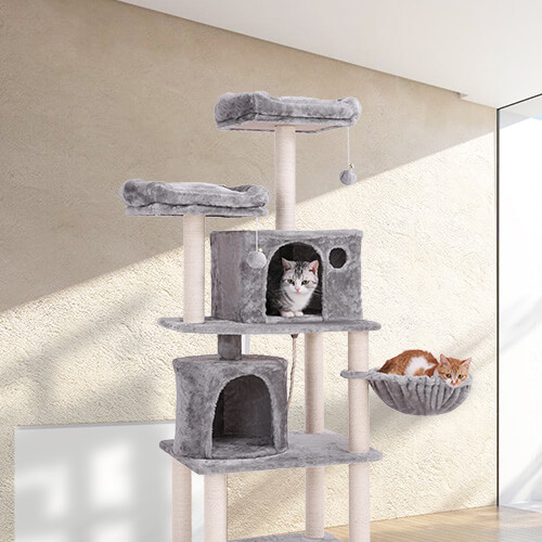 FEANDREA 2 condos cat tower
